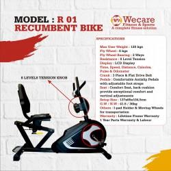Recumbent Bike-D 01